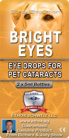 Bright Eyes Drops for Pets dissolve pet cataracts naturally without the need for invasive cataracts surgery. Want to know more - http://petdrops.com