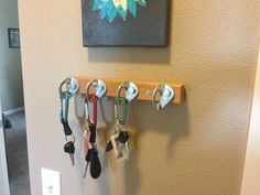 My local outdoor store had bolt hangers on sale so I decided to make my own key . - My local outdoor store had bolt hangers on sale so I decided to make my own key rack! Rock Climbing Training, Rock Climbing Gear, Home Climbing Wall, Alpine Climbing, Escalade, Key Rack, Outdoor Store, Bouldering, Home Organization