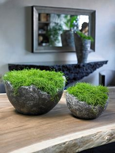 wavy bowl supplied by koberg If there are some patterns, or if the plants are placed on the…want those urns! Garden Spaces, Garden Pots, Big Garden, Ikebana, Decoration Restaurant, Home Decoration, Minimalist Garden, Concrete Crafts, Interior Plants