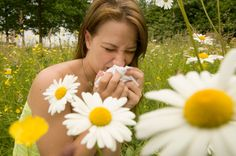 Natural allergy remedies prove to be a boon when it comes to preventing or minimizing the symptoms of allergy.
