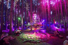 electric forest music festival - 2011