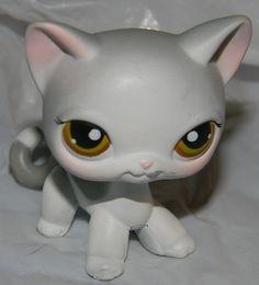 Littlest Pet Shop LPS #138 Grey and White Short Hair SIAMESE KITTY Cat Hazel Eye