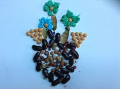 Seed collage . Gracie 5