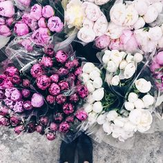 peonies are the new avocado, you heard it here first