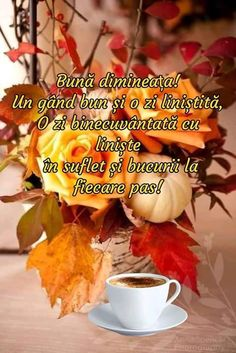 Good Morning, Alice, Autumn, Google, Bom Dia, Sunday Pictures, Buen Dia, Bonjour, Fall Season