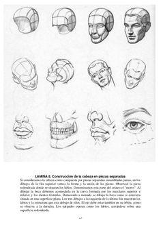 25 LAMINA 8. Construcción de la cabeza en piezas separadas Si consideramos la cabeza como compuesta por piezas separadas e...