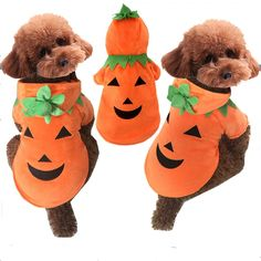 Christmas Clothes Pumpkin Dog Coat Puppy Halloween Pumpkin Evil Costume Pet Dog Autumn Winter Clothes For Dog's Christmas Coat #Affiliate