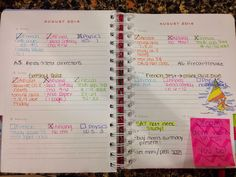 The Chic Classmate - my New post on agenda organization in my Lilly agenda