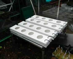Hydroponic Strawberry Systems | We now have small strawberries forming in the strawberry baskets.
