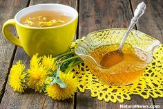 Dandelion Tea Detoxify Liver & Kidneys, kills Cancer and purifies Blood