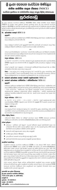 Sri Lankan Government Job Vacancies at Ministry of Mahaweli - director of development job description