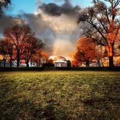 University of Virginia!