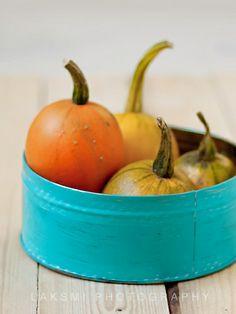 Pumpkins by by Laksmi W