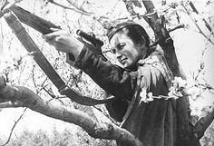 Lyudmila Pavlichenko, la más mortífera de las francotiradoras rusas.  En 1943 recibió la Estrella de Oro de la condecoración de Héroe de la Unión Soviética. Tras la guerra, terminó su formación en la Universidad de Kiev y empezó su carrera como historiadora. Entre 1945 y 1953 fue ayudante del Cuartel General Principal de la Armada Soviética (participando además en numeras conferencias y congresos internacionales)