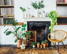 A Guide to Indoor Gardening: A Review of Living With Plants   Living With Plants is one of those books I wish I had read before I went out and bought a ton of plants years ago. It's one of those books I'll likely reference for years to come, not only because of its useful information on caring for my plants, but also for its beautiful photography, effective styling tips, and the handful of DIY tutorials accompanied with easy-to-follow instructions.