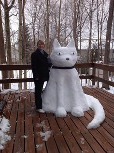 Greater Lafayette Cat Hospital, Lafayette, IN - This is client Lisa Cavanaugh displaying her magnificent snow art. Isn't she talented? She is a true cat lover.