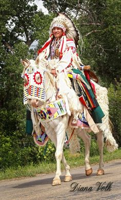 White Wolf : 16 Photos of Diana Volk Capture The Beauty of Native Americans Native American Horses, Native American Wisdom, Native American Regalia, Native American Pictures, Native American Beauty, American Indian Art, Native American History, American Indians, American Symbols
