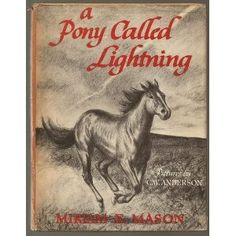 A Pony Called Lightning