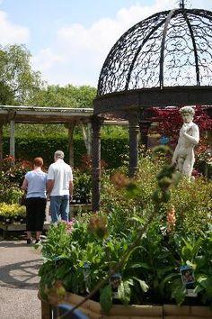 Garden ideas near Nantwich, UK.
