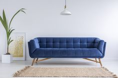 Mint living room with blue sofa, rug and lamp living room interior royalty free stock images stock photo Mint Living Rooms, Simple Living Room, Living Room Interior, Interior Office, Living Spaces, Most Comfortable Office Chair, White Carpet, Home Look, Decorating On A Budget