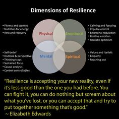 Dimensions of Resilience: Based off of Native Medicine Wheel