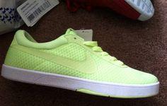 Preview: Nike Eric Koston Express