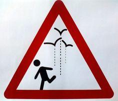 ¿Alguien ha visto esta señal en el libro de teoría? :-)