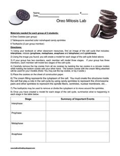 biology ideas Ballin with Balling: Modeling Mitosis with Oreo Cookies Designing Coherent Instruction Biology Classroom, Biology Teacher, Ap Biology, Teaching Biology, Science Biology, Life Science, Animal Science, Science Fun, Biology Experiments