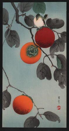 Seitei(Shotei)Watanabe(渡辺省亭Japanese, Bird on a Persimmon Tree not sure if this is sumi-e, but I sure love persimmon art! Japanese Painting, Chinese Painting, Chinese Art, Art And Illustration, Art Asiatique, Art Japonais, Japanese Prints, Japan Art, Woodblock Print