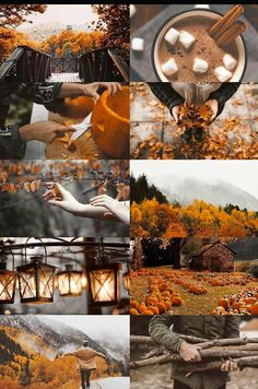 This is how fall should be ❤️❤️