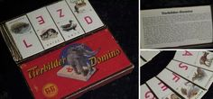 Tierbilder Domino