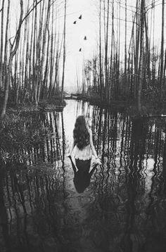 walk into reflection...
