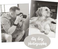 diy dog photography links