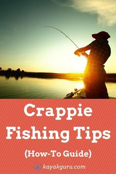 Crappie Fishing Tips Crappie Fishing Tips: Full How-To Guide To Catching Crappie With Bait & Lures: Where & what time of the year to catch them Crappie Lures, Crappie Fishing Tips, Bass Fishing Tips, Carp Fishing, Trout Fishing, Saltwater Fishing, Kayak Fishing, Fishing Reels, Fishing Tricks