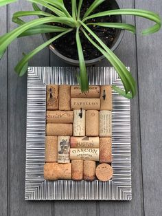 Did you know that cork forests contribute and support forestry biodiversity by protecting 6.6 million acres of Mediterranean basin from becoming a desert? . . . . . . . . . . . #themoreyouknow #funfacts #corkfacts #winefacts #winecorks #winecorkdecor #winecorkart #corkboard #winecorkboard #bulletinboard #homeorganization #winecorkjewelryholder #jewelrydisplay #picturedisplay #jewerlystorage #turquoisedecor #farmhousedecor #rusticdecor #upcycledgifts #upcycleddecor #upcycledart… Wine Cork Jewelry, Wine Cork Art, Diy Cork Board, Cork Boards, Gifts For Wine Lovers, Gift For Lover, Jewellery Storage, Jewelry Organization, Wine Cork Holder
