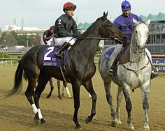 Pine Island, who tragically broke down during the 2006 Breeders' Cup Distaff, with Javier Castellano in the post parade.