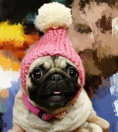 Pugs, Winter Hats, Crochet Hats, Fashion, Clothes, Knitting Hats, Moda, Fashion Styles, Pug Dogs