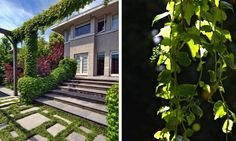 Backyard-Holidays-Outdoor-Design-1
