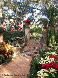 Spanish tiled steps rise from a pathway in a terraced garden. #Hacienda