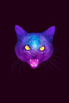 Cat #iPhone wallpaper