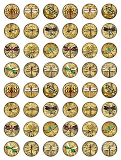 Dragonflies Ephemera Ferns Digital Collage Jpeg by pixeltwister Vintage Printable, Vintage Labels, Vintage Ephemera, Vintage Paper, Bottle Cap Art, Bottle Cap Crafts, Bottle Cap Images, Beer Bottle, Dragonfly Art