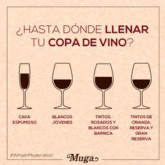 Utiliza la copa adecuada ¡y que se despliegue todo su potencial! Would you like to enjoy wine as it should be done? Use the right glass, and let its full potential unfold! Bar Drinks, Wine Drinks, Cocktail Drinks, Alcoholic Drinks, Cocktails, Dining Etiquette, Etiquette And Manners, Wine Guide, Wine Cheese
