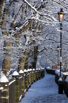 Chester walls, early morning snow, England | by Franck_