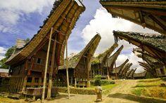 Tana Toraja. Bali.