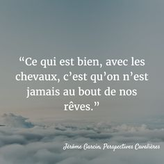 qalo-lolotte-quote-jerome-garcin-horse qalo-lolotte-citation-jerome-garcin-cheval - Art Of Equitation Horse Quotes, Animal Quotes, Types Of Horses, Quotes About Photography, Lifestyle Photography, Horse Training, Daily Quotes, Top Quotes, Quote Of The Day