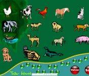 Recursos educativos sobre animales. Gobierno de Canarias.