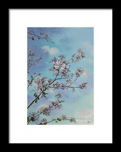 5130880c97 Sky Framed Print featuring the painting Orchid Tree Blooms by Alla Gorelik