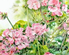 Image result for pink geranium painting