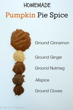 Pumpkin Pie Spice Mix from @galmission