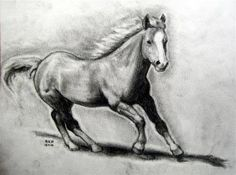 How to Draw a Realistic Horse, Draw Real Horse, Step by Step, Farm animals, Animals, FREE Online Drawing Tutorial, Added by finalprodigy, October 11, 2010, 11:52:44 pm